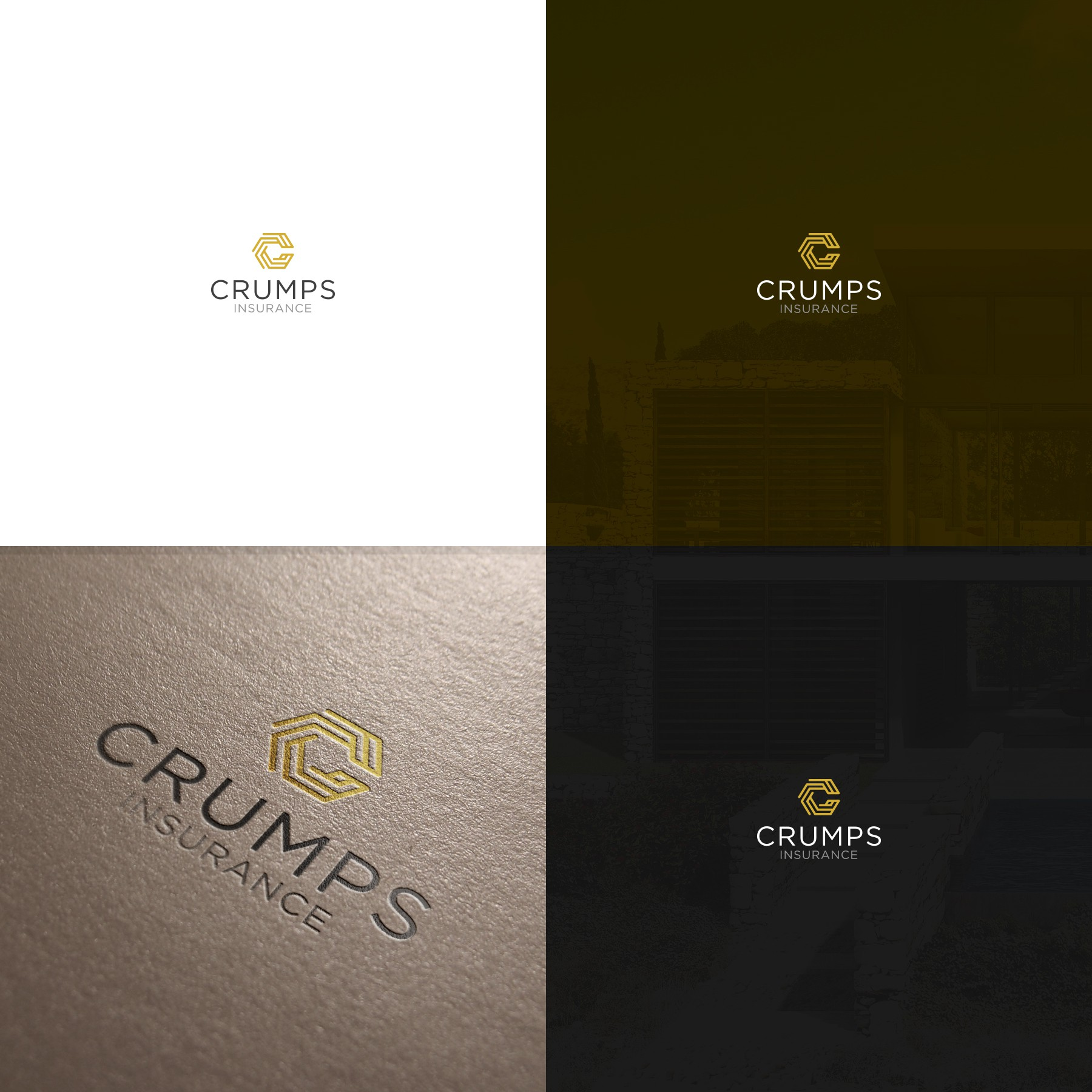 Guaranteed winner to create a logo with creative icon for an insurance agency.