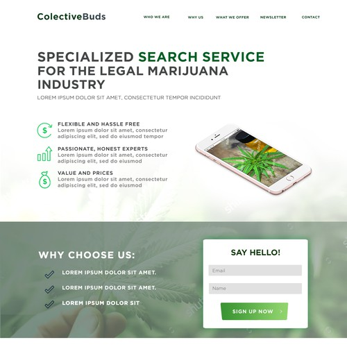 Marijuana website landing page