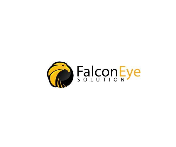 Falcon Eye Solutions needs a new logo