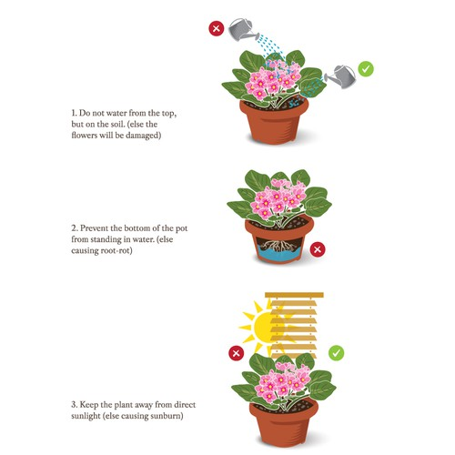 Plant care illustration