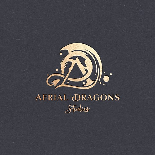 Aerial Dragons Studio