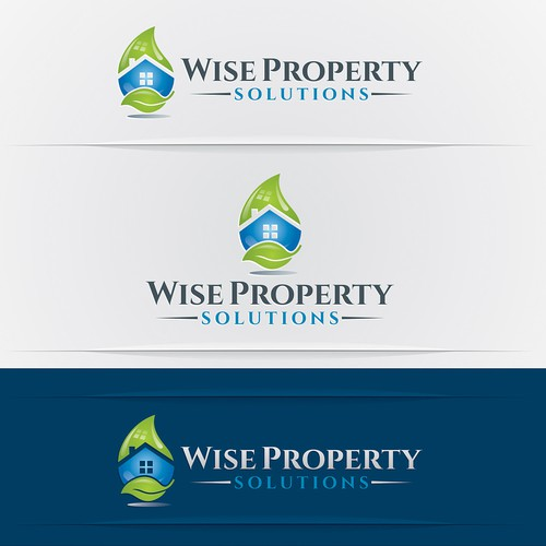 logo and business card for Wise Property Maintenance  or Wise Property Solutions
