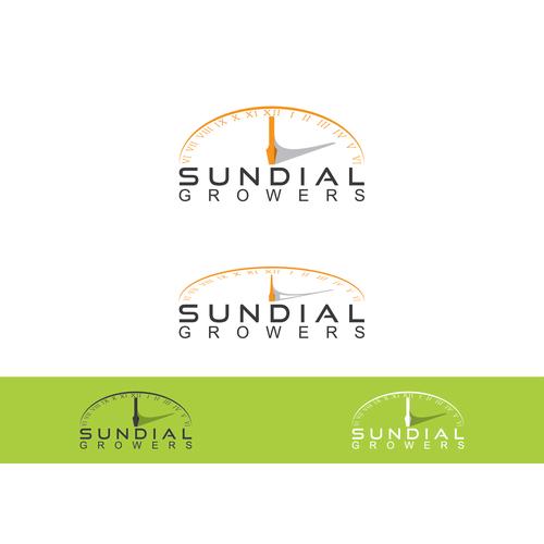 Create sundial based logo for medicinal marijuana
