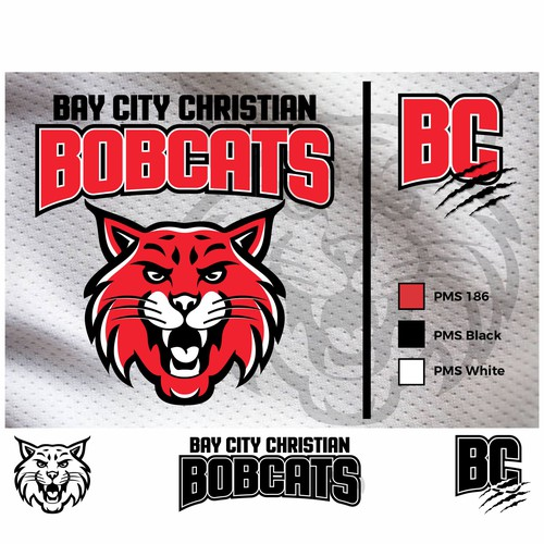 Bold logo concept for school sports teams