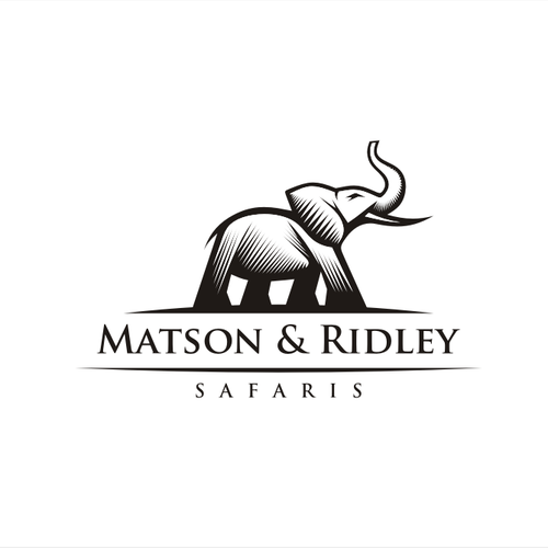 Create a logo that offers classic stylish adventure in africa and save elephants