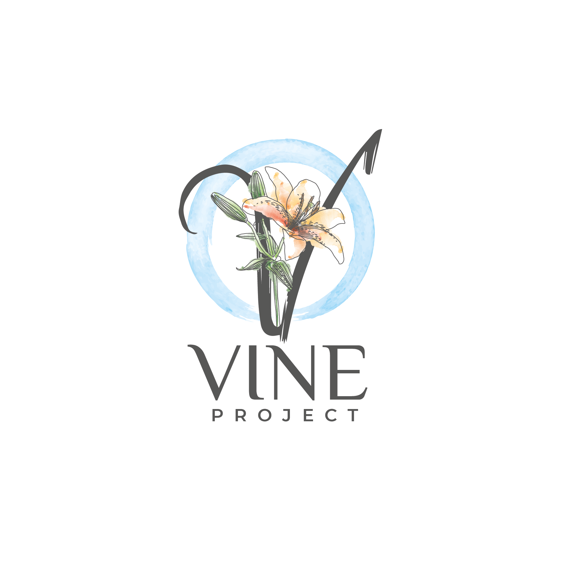 The Vine Project- Women's empowerment project