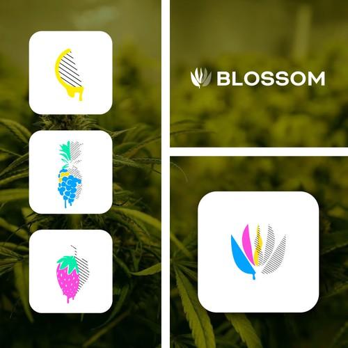 Logo design for a Maine Based medical marijuana dispensary