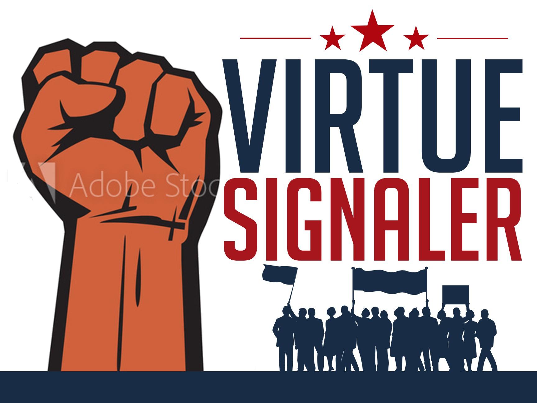 Virtue Signaler Political Yard Sign