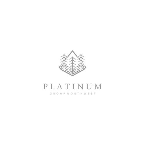Platinum Group Development Logo Design