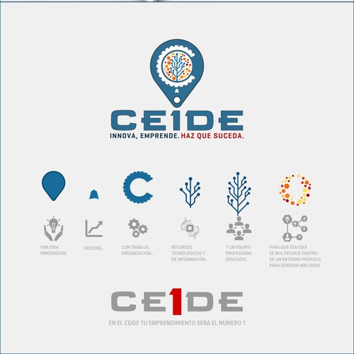 Logo for CEIDE
