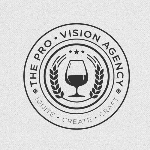 Logo Concept For The Pro Vision Agency