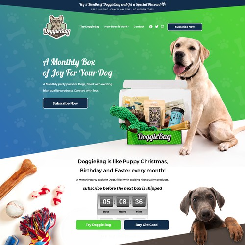 Doggie Subscription Box Website Design