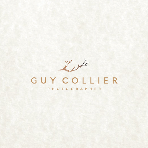 logo for Professional, luxe wedding photographer