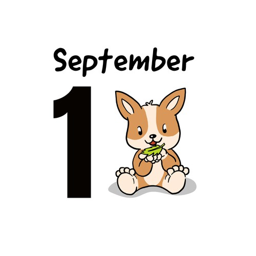 Daily Calendar Design