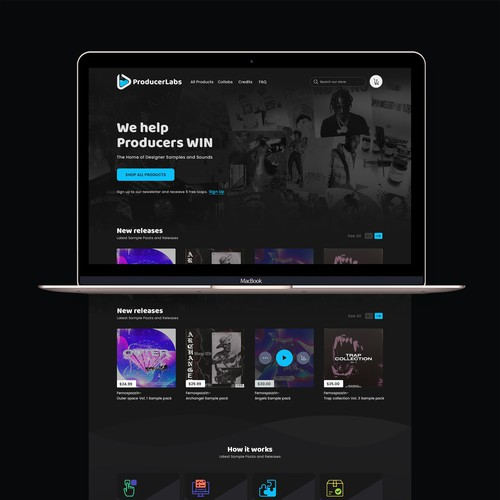 Producer Labs Website