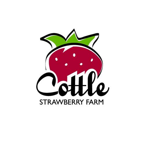 Logo concept for local strawberry farm