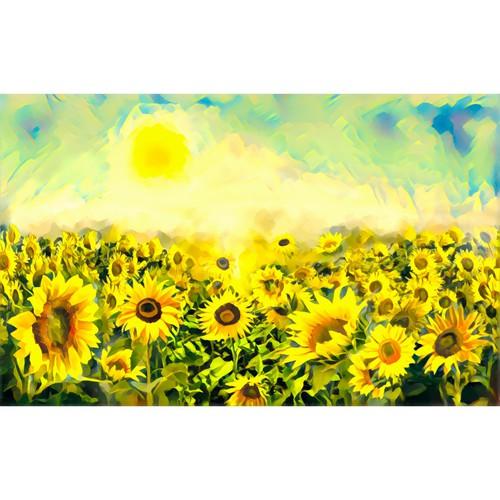 Sunflowers field illustration