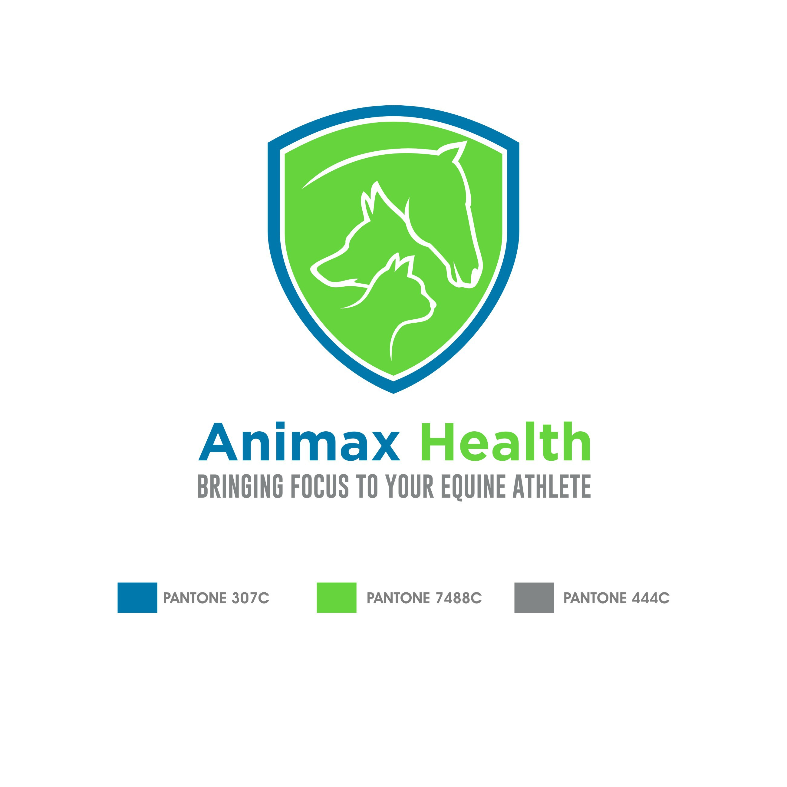 Launch logo for new equestrian company: Animax Health