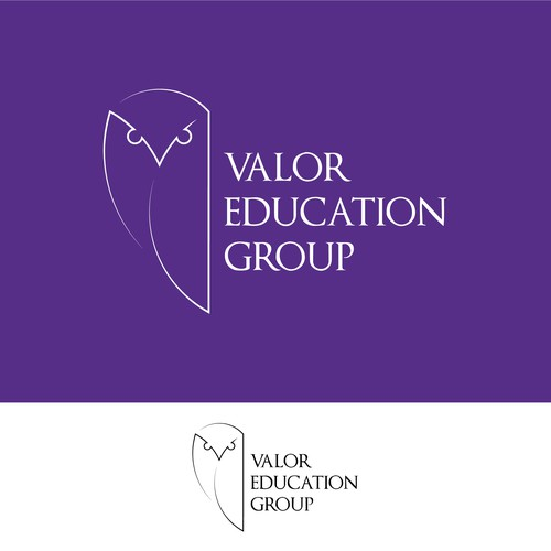 Valor Education Group - Owl Design