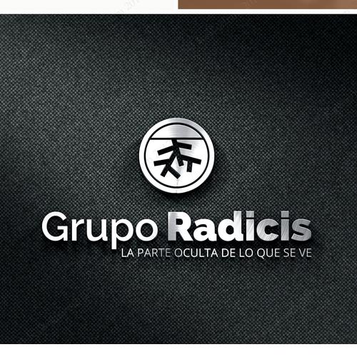 logo for holding corporation
