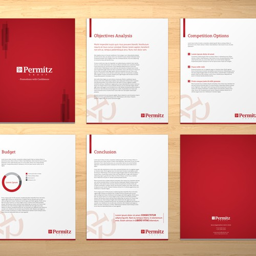 Brochure for Permitz Group