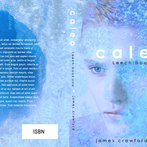 Help Book author james crawford with a new print book cover