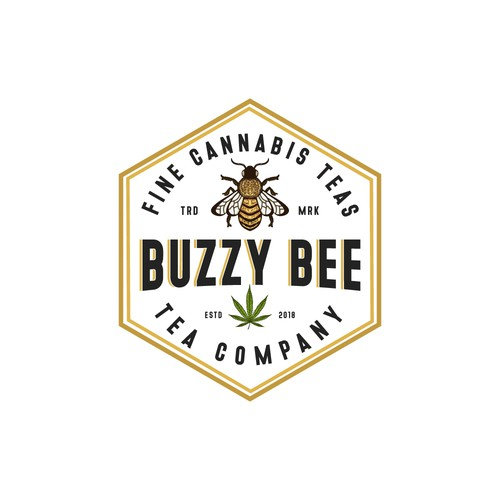 Logo Concept for Buzzy Bee