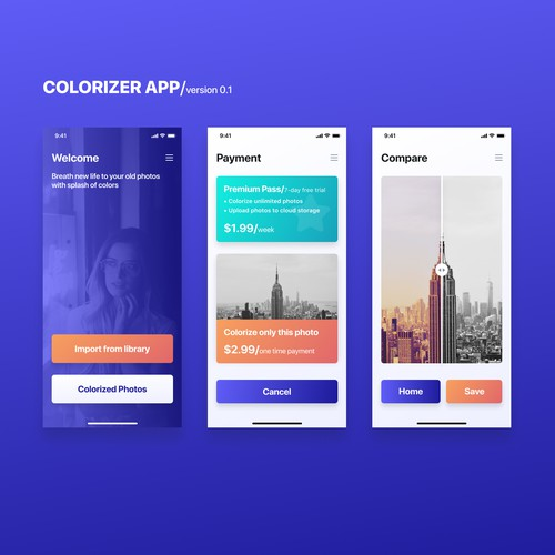 UI design for a Colorizer app