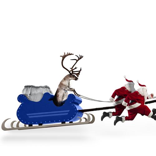 Ziel Christmas card