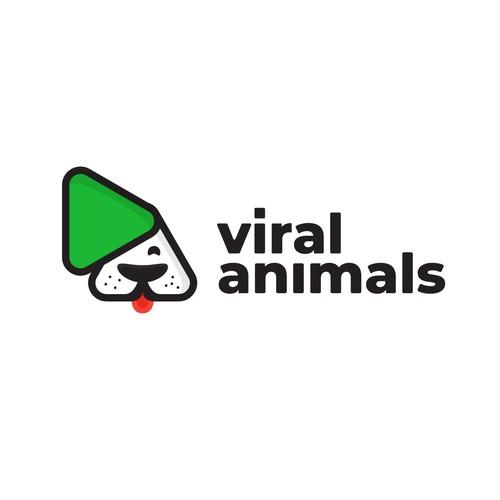 pets animal