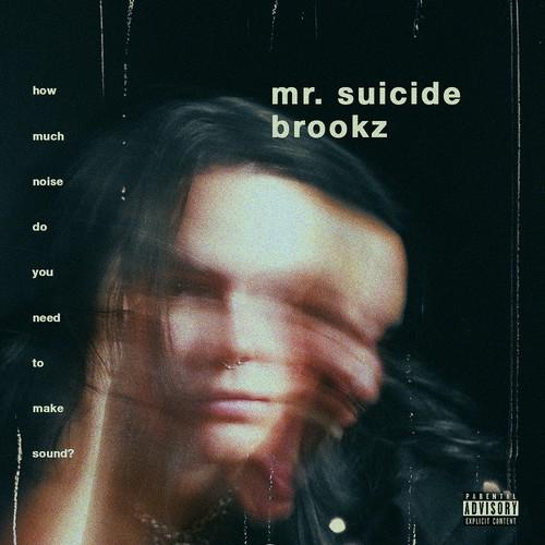 mr. suicide - brookz