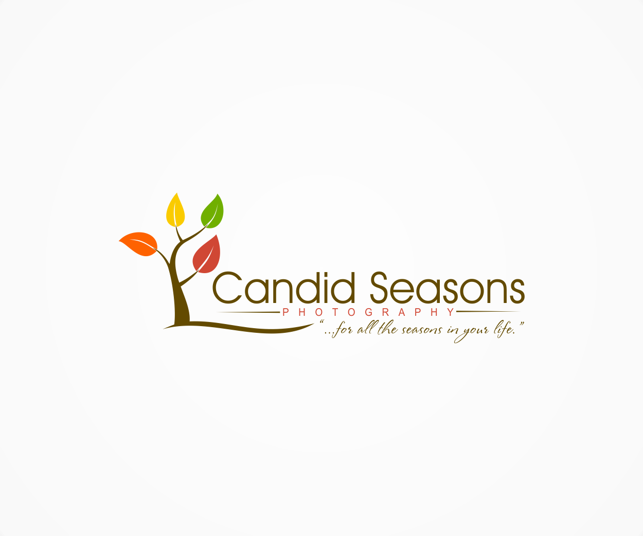 Help Candid Seasons Photography with a new logo