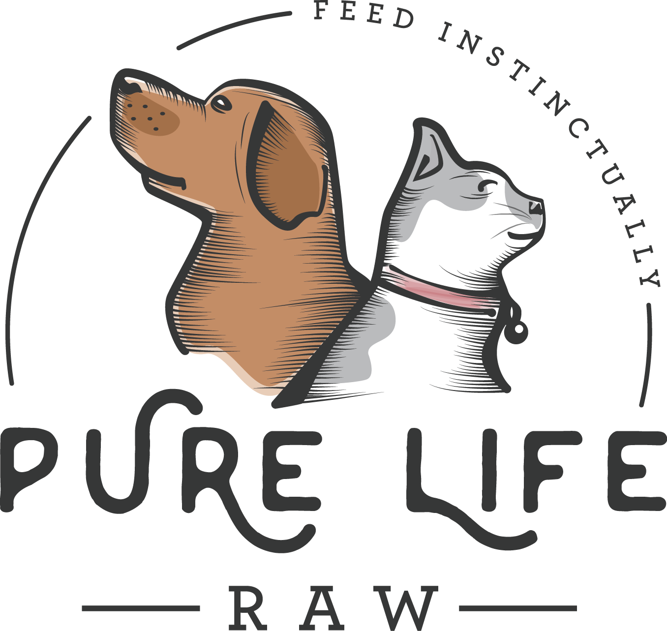 Still feeding Kibble to your pet? Help me change that by creating a website for Pure Life Raw.