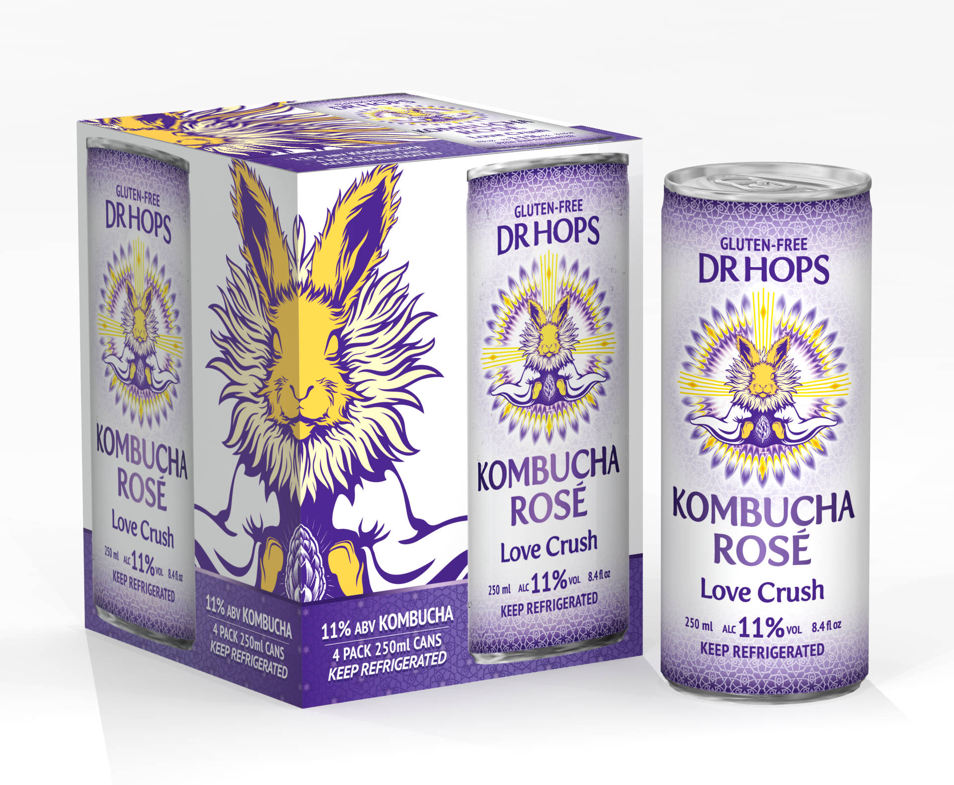 Mock-Ups for Dr Hops Cans and 4-Pack Boxes