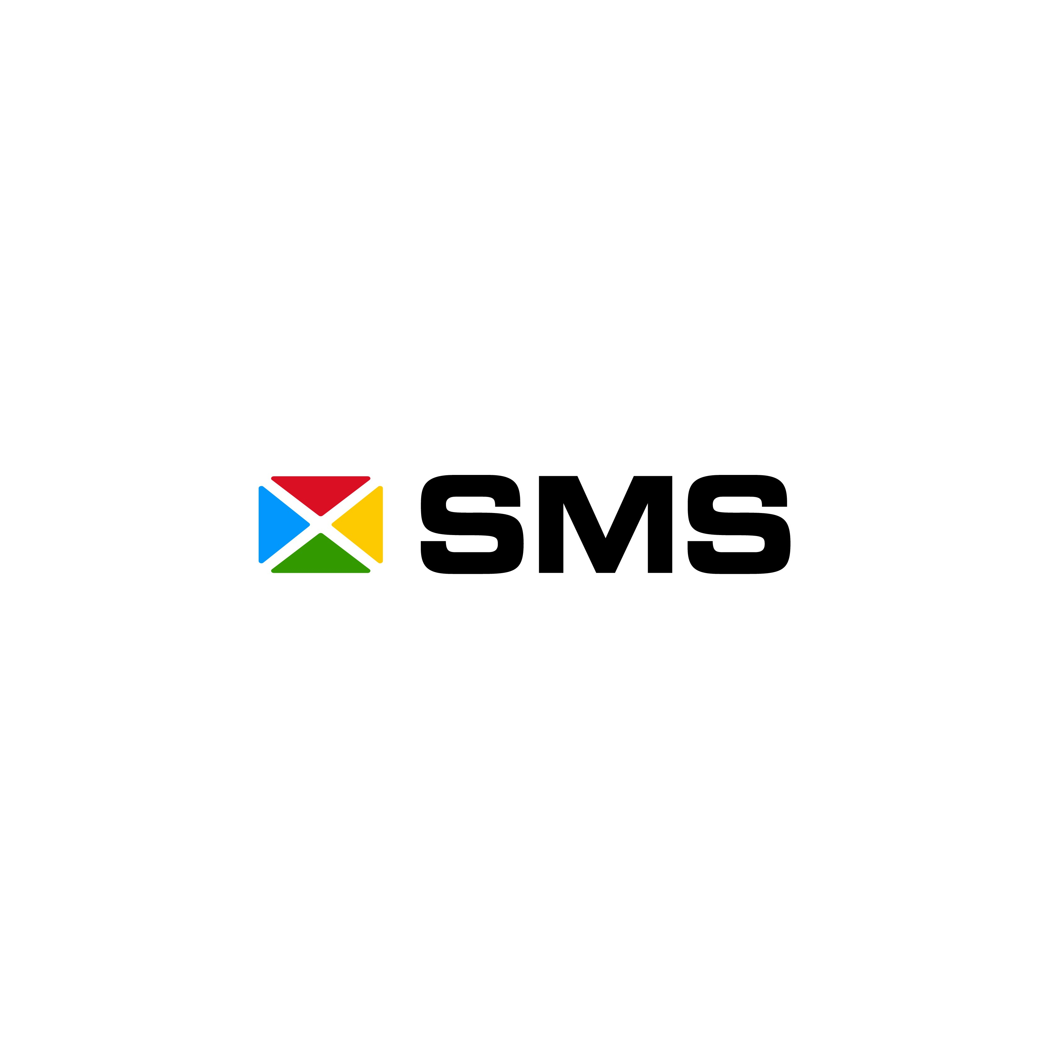 Create professional captivating logo for IT consulting company SMS