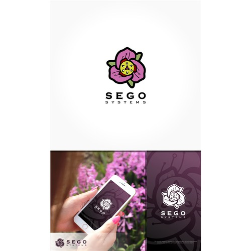 flower, sego lily, technology