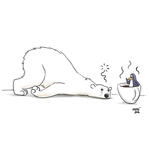 polar bear coffee