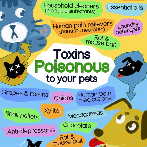 Poster - Toxins in pets