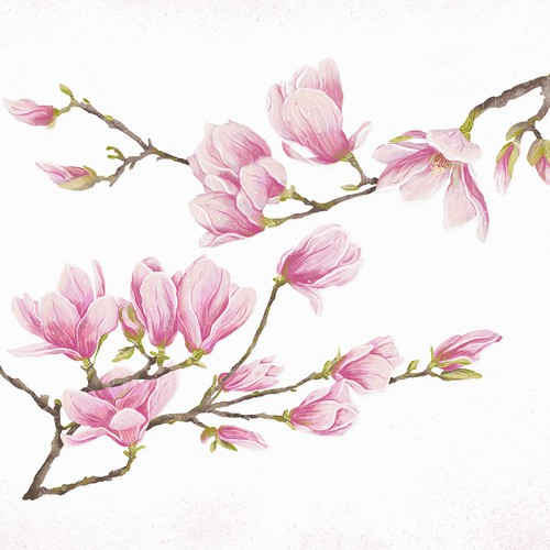Magnolia flowers for ceramic mug
