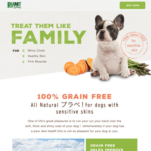 Pet Food Website