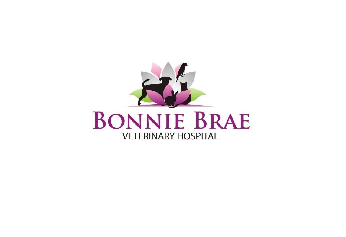 Breathe new life into our holistic veterinary hospital
