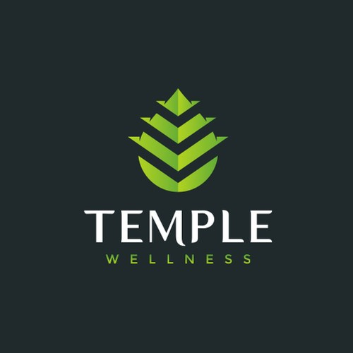 Bold modern logo for Temple Wellness