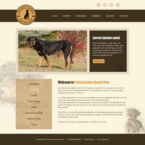 Transylvanian Hound Club - Rare dog breed club needs web design!