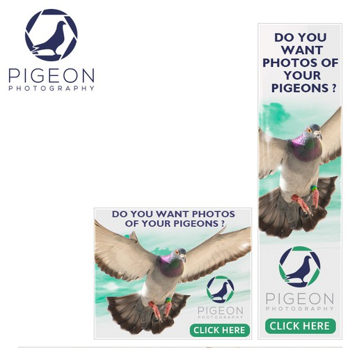 banner ads for PIGEON PHOTOGRAPHY