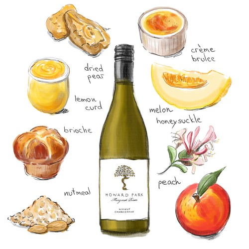 Wine descriptor illustrations