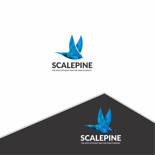 Bird Logo Design for company
