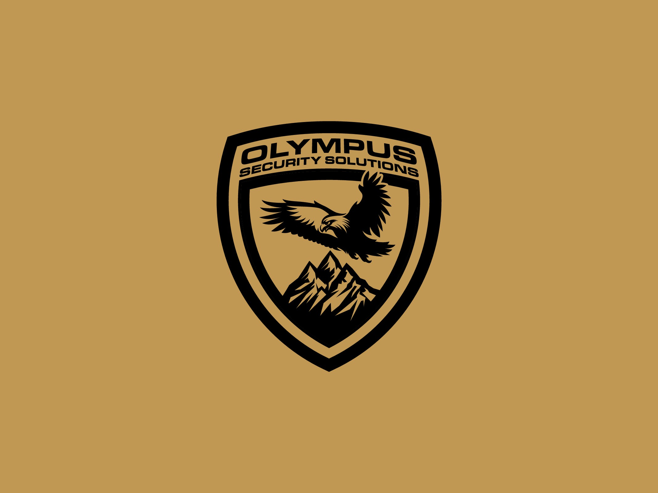 Olympus Security Solutions