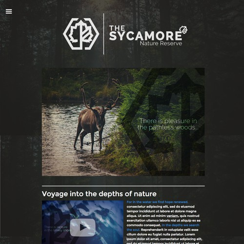 Sycamore Website Concept
