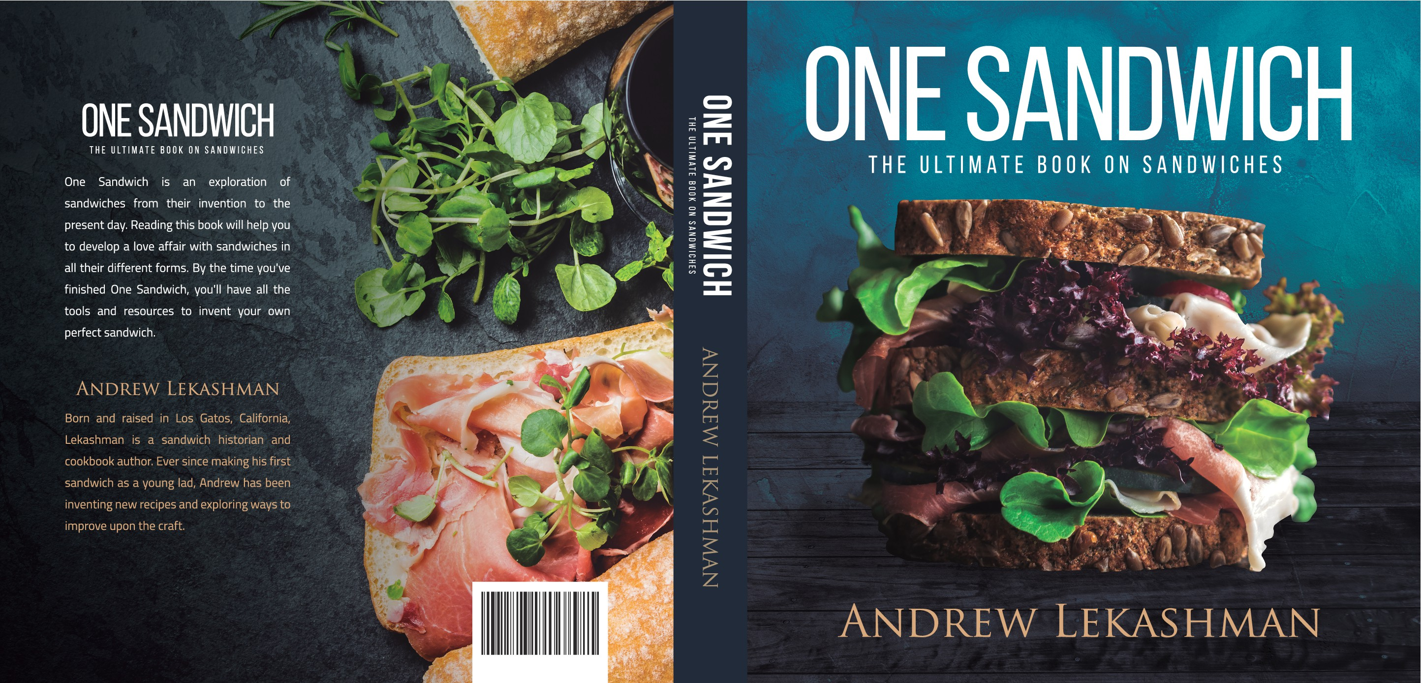 One Sandwich Book Cover - An Exploration of Sandwiches