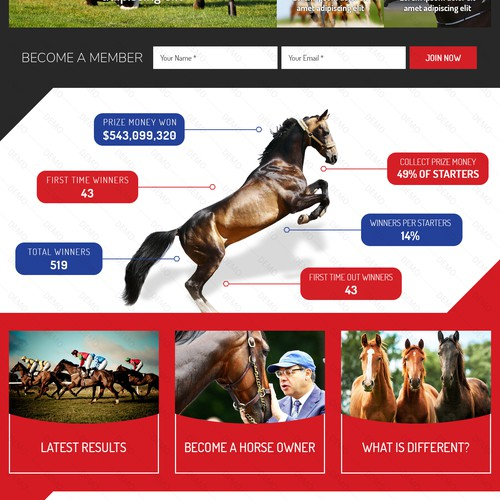 Race Horse Seller